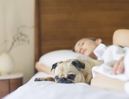 Huis- tuin- en keukenmiddelen bij migraine